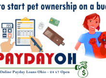 Tips to start pet ownership on a budget PaydayOH